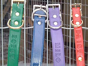 Custom Made Collars & Leashes